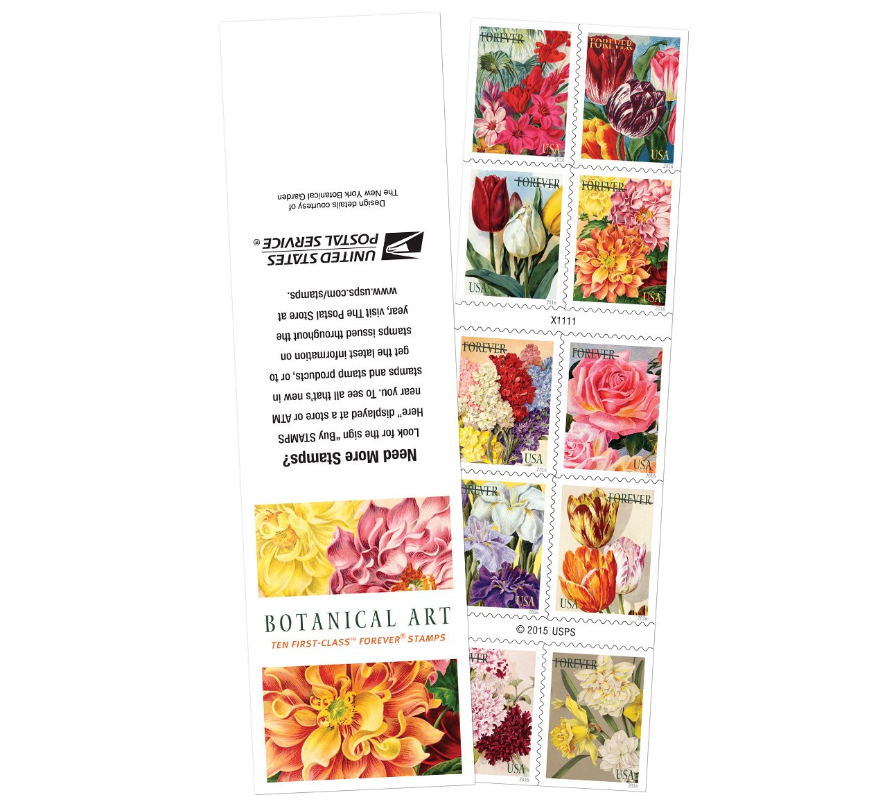 Amazon 20 Botanical Art Usps Forever First Class Postage Stamps