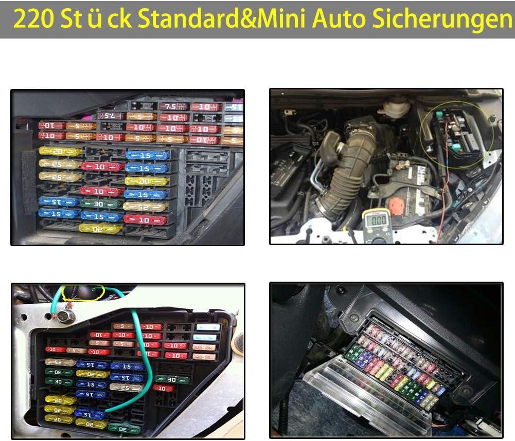 KFZ Sicherungen Set Busirde 220 St/ück Standard Auto Sicherung Mini Autosicherungen 2A 3A 5A 7.5A 10A 15A 20A 25A 30A 35A mit 1 Sicherungszieher