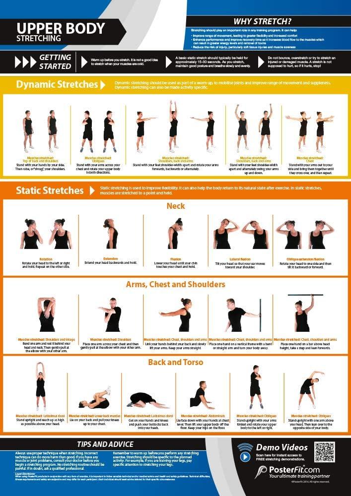Póster con ejercicios de estiramiento, formato A3 ...