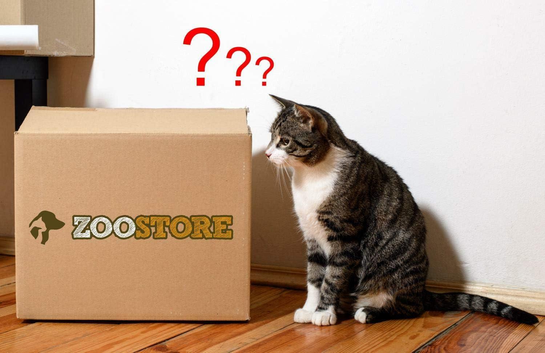PETGARD - Caja Sorpresa para Todos los Gatos: Amazon.es: Productos para mascotas
