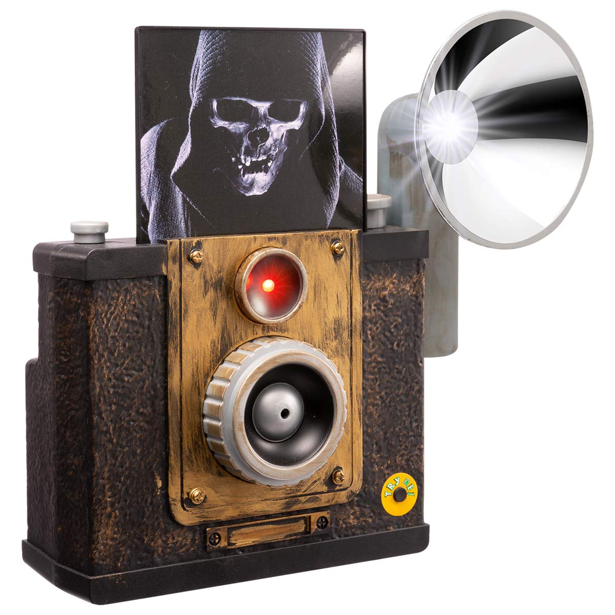 HollyHOME Halloween Decorations Gifts Vintage Haunted Instant Camera Prop with Flashes and Sound Effect for Halloween Party by HollyHOME