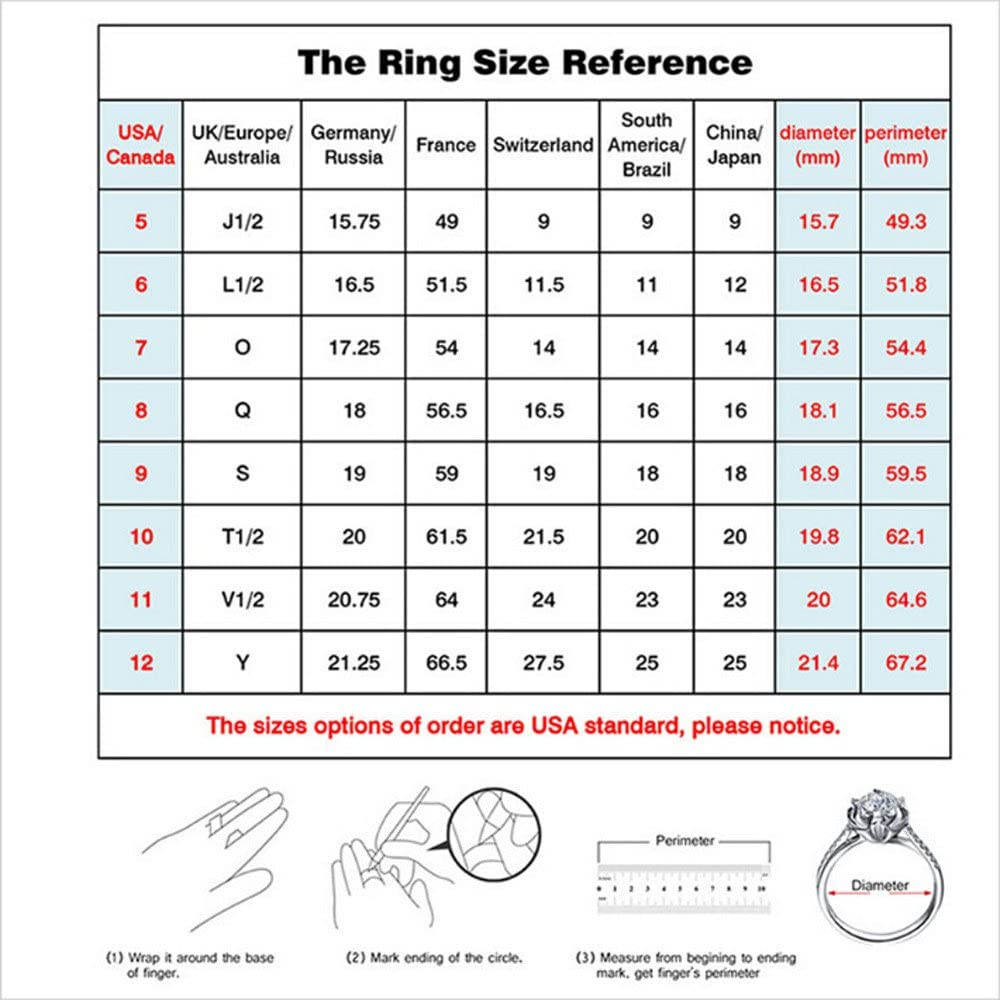 Haluoo 925 Sterling Silver Dragon Ring with Diamond Creative Cubic Zirconia CZ Engagement Statement Ring White Gold Wedding Band Men and Womens Ring