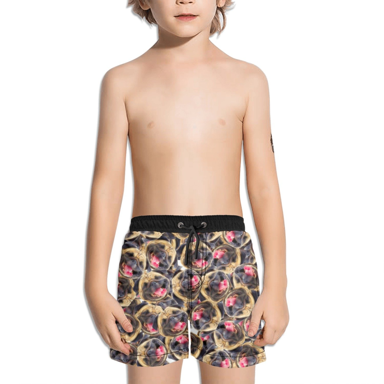 Trum Namii Boys Quick Dry Swim Trunks Seamless Cute Pugs Shorts