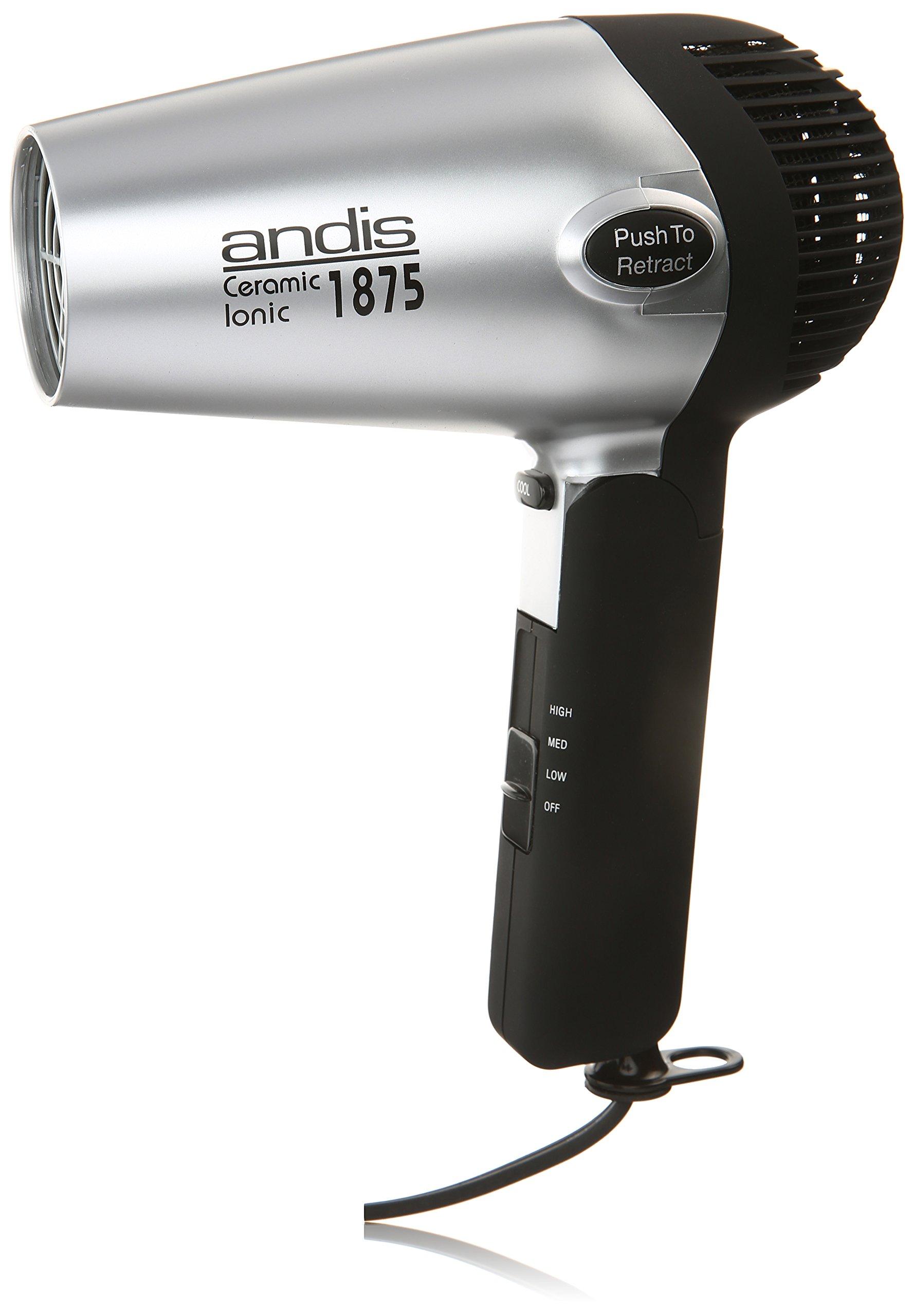 Andis 1875-Watt Fold-N-Go Ionic Hair Dryer, Silver/Black (80020)