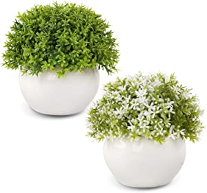 Wholine 2 Packs Artificial Mini Potted Plants Small Fake Green Grass Shrubs with White Pot for Home Office Desk Room Decoration