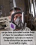 3M Full Facepiece Reusable Respirator 6800, Paint