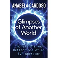 Glimpses of Another World: Impressions and Reflections of an EVP Operator