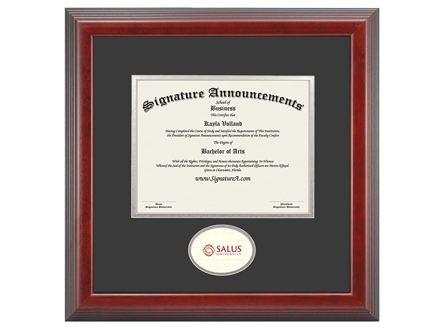 Signature Announcements Salus-University Undergraduate Sculpted Foil Seal Graduation Diploma Frame 16 x 16 Cherry