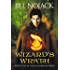 Wizard's Wrath (Fae Unbound Teen Young Adult Fantasy Series Book 4)