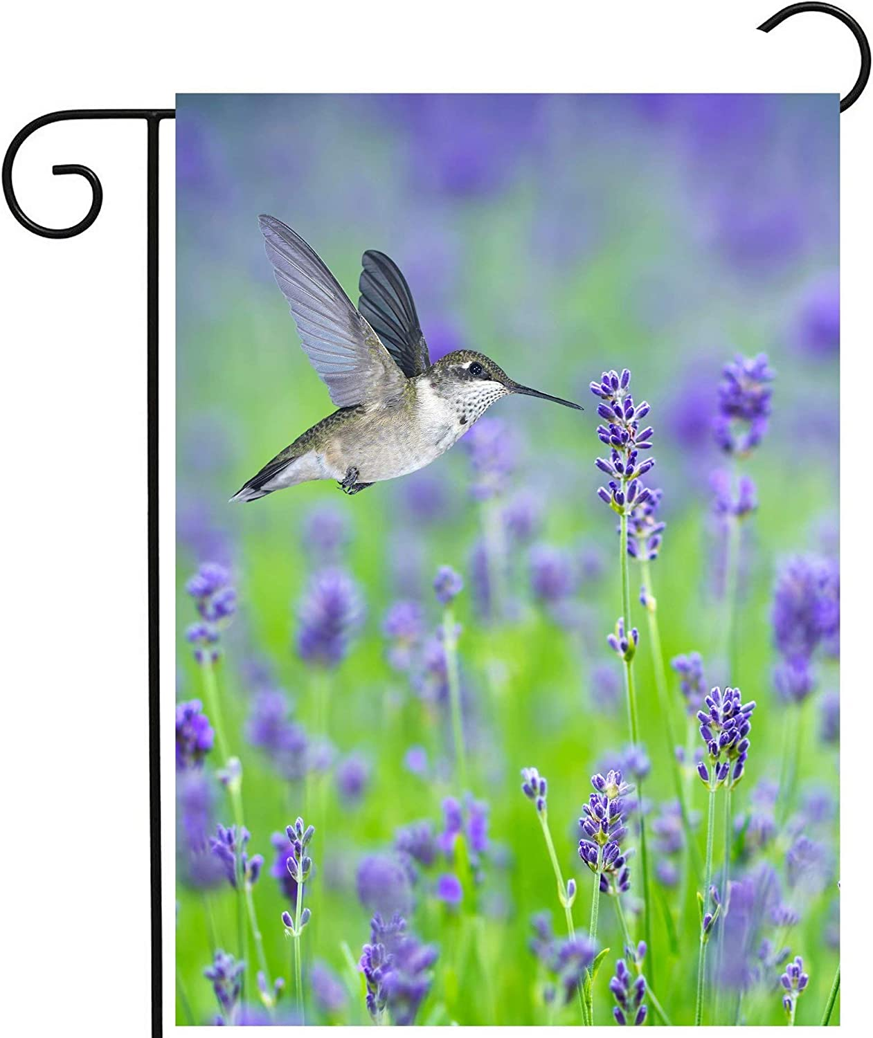 Pickako Tropical Summer Spring Hummingbird Bird in Purple Lavender Floral Flowers Garden Yard Flag 12 x 18 Inch, Double Sided Outdoor Decorative Welcome Flags Banners for Home House Lawn Patio