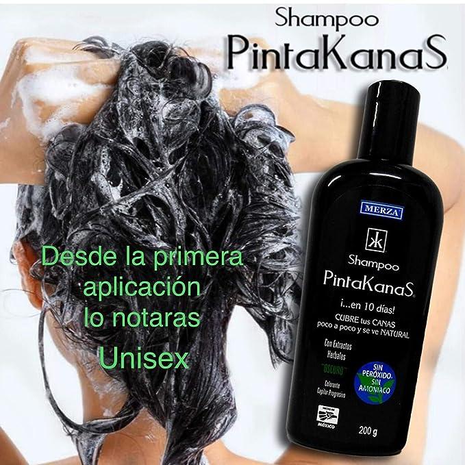 Pack 2 Shampoo Pintakanas Para Pigmentar Las Canas Unisex Elimina Las Canas Deja El Cabello Suave Y Con Brillo Sin Peróxido Ni Amoniaco
