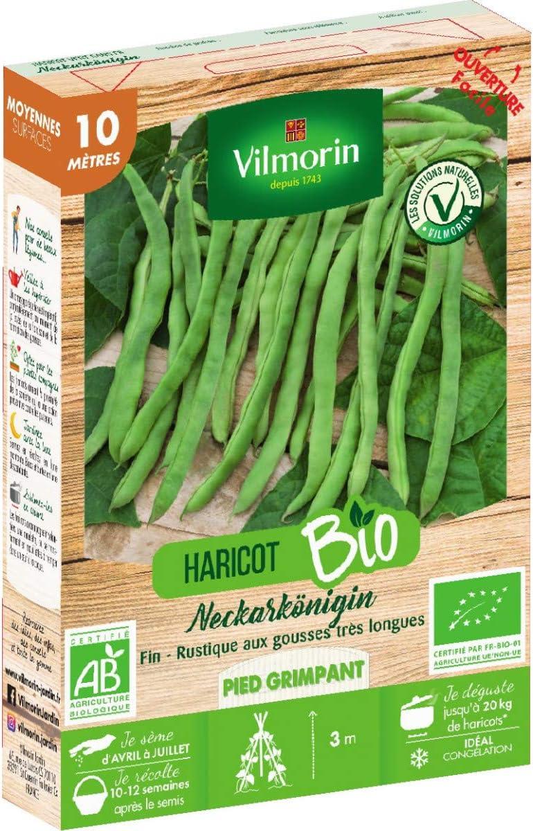 Vilmorin Graines de Haricot vert sans fil NECKARK/ÖNIGIN BIO 10 m/ètres