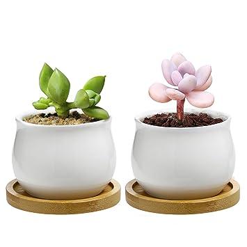 chasegarden 7 cm Keramik rund weiß schlichtes Design Sukkulente Topf ...
