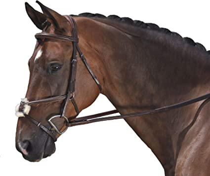 Horse browband with Changeable Designs in center comes w//2!