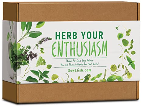 Sow Lush Set de Cultivo de Semillas «Herb Your Enthusiasm» 6 ...