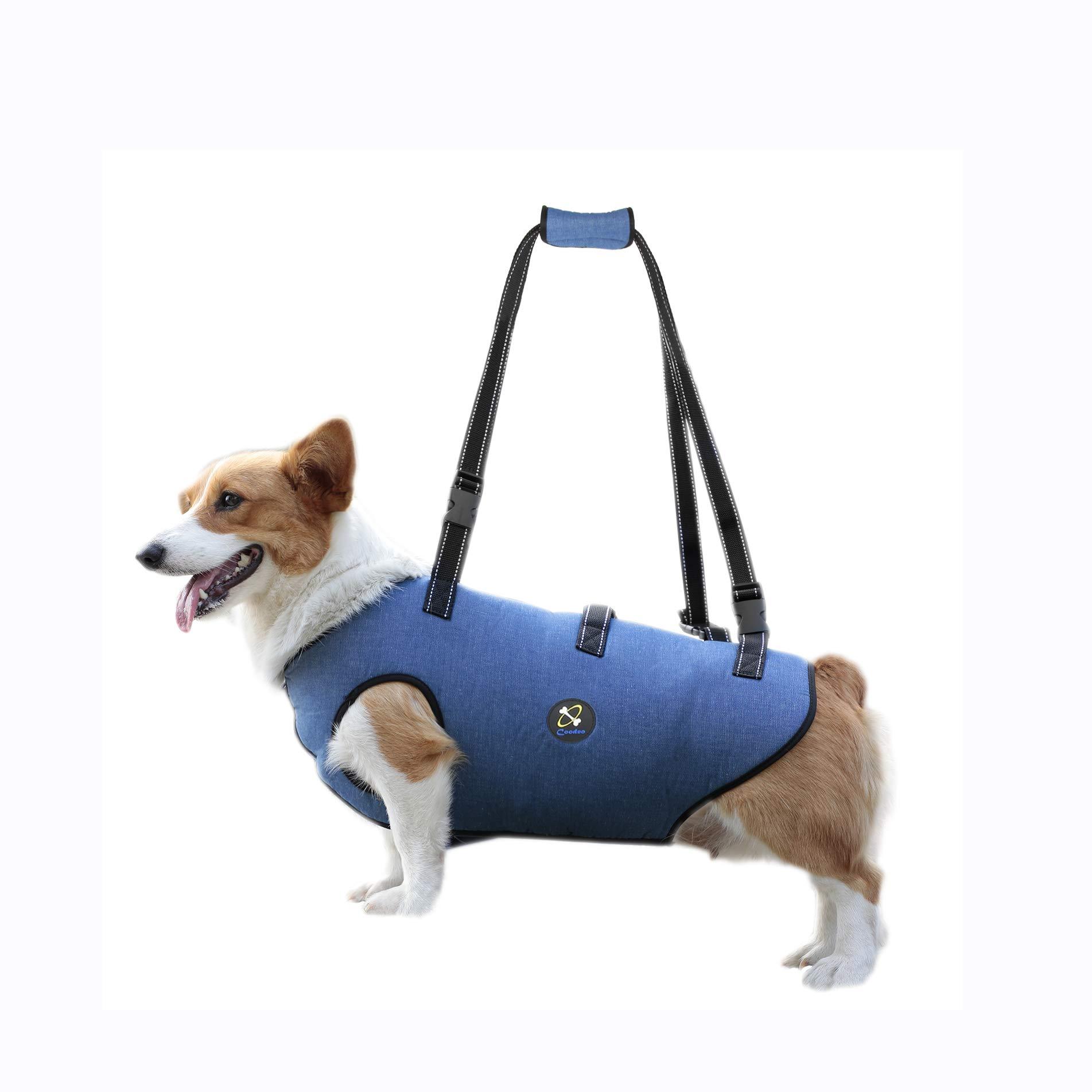 Arnes Mascotas Perros Discapasitados Paseo- Chico