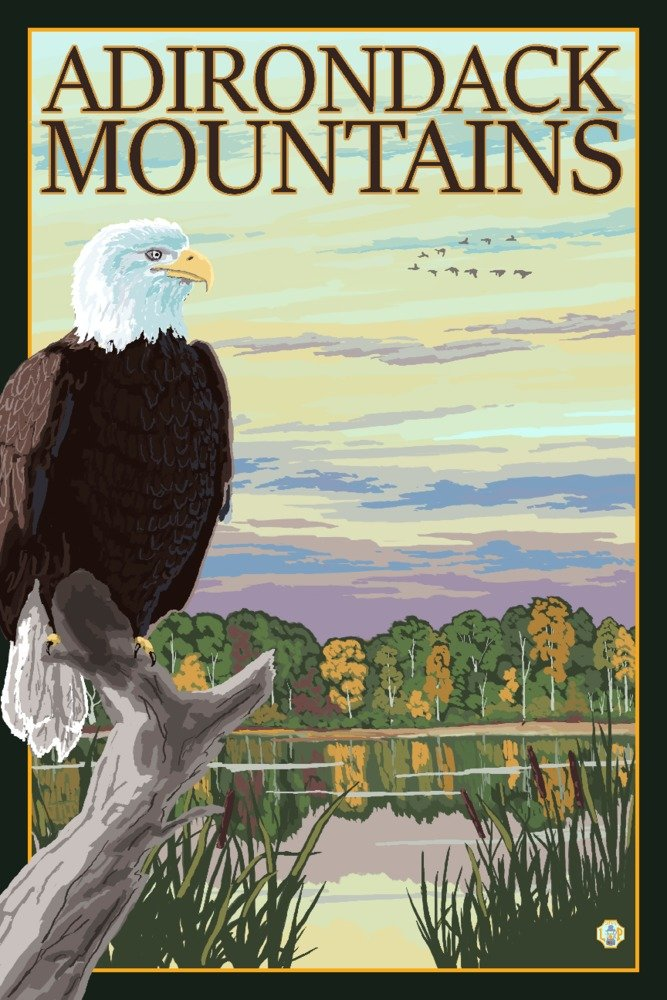 Adirondack山、ニューヨーク – Eagle and wetlands 36 x 54 Giclee Print LANT-80549-36x54 36 x 54 Giclee Print  B072PZMWT9