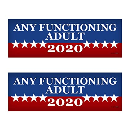 Any functioning adult 2020 funny bumper sticker 3 x 9 car
