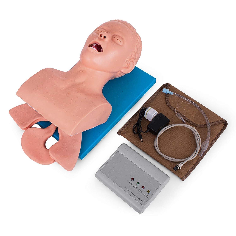 Intubation Model Manikin Airway Management Study Teaching Trainer Model Oral Nasal Simulator Model 220V US Warehouse Adult Intubation Manikin