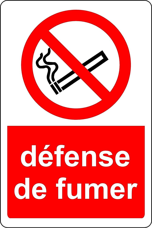 D/éfense de Fumer Panneau 1.2mm en Plastique 400mm x 300mm