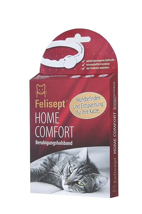Felisept Home Comfort beruhigung Collar/Collar de Gato con Natural Gato Menta Aumenta Bienestar &