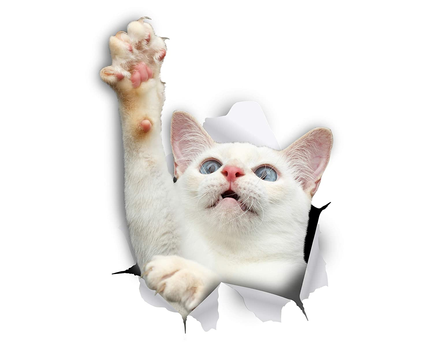 Winston & Bear 3D Cat Stickers - 2 Pack - White Reaching Cat Decals for Wall, Stickers for Bedroom - Fridge - Toilet - Room - Retail Packaged