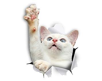 Winston & Bear Gato 3D pegatinas - Pack 2 - blanco llegando a gato pegatina para