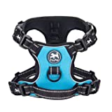 PoyPet 2019 Upgraded No Pull Dog Harness with 4