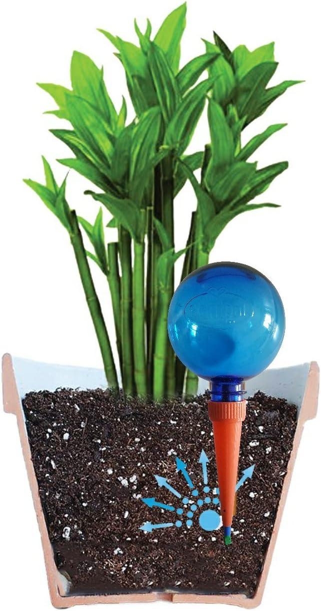 Vacanza Irrigazione prodotti Confezione da 2 Bianco Plantpal irrigazione sfere Miglior Valore