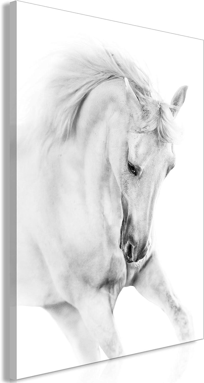 murando Cuadro en Lienzo Caballo 60x90 cm 1 Parte Impresión en Material Tejido no Tejido Impresión Artística Imagen Gráfica Decoracion de Pared - Animal Gris g-B-0110-b-a