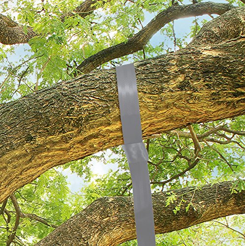 PREMIUM EXTRA LONG Tree Swing Swings Straps 1000 Lbs. Single 10 Ft Plus Carabiner Swing Straps Earth Toys For Toddlers Safest Easiest Way To Tree Swings For Adults Kids Or Grandkids (Minutes To A Better Swing)
