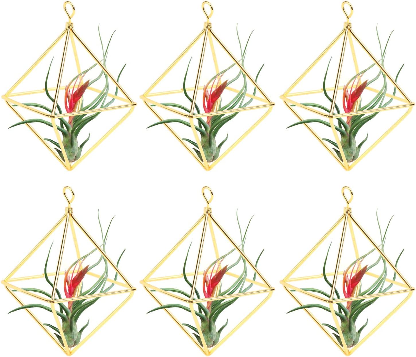 Yesland 6 Packs 2.4 Inch Air Plant Holder, Modern Geometric Metal Planter, Minimalist, Himmeli Style Easy to Hang Design for Home, Office and Wedding Decor