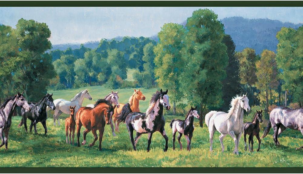 Decorate By Color BC1581827 Jewel Tone Wild Horses Wallpaper Border