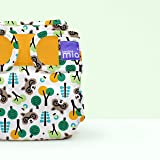 Bambino Mio, miosoft cloth diaper cover, raccoon