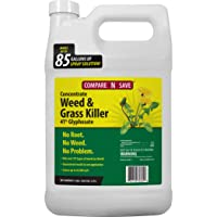 Compare-N-Save 016869 Concentrate Grass and Weed Killer, 41-Percent Glyphosate,...