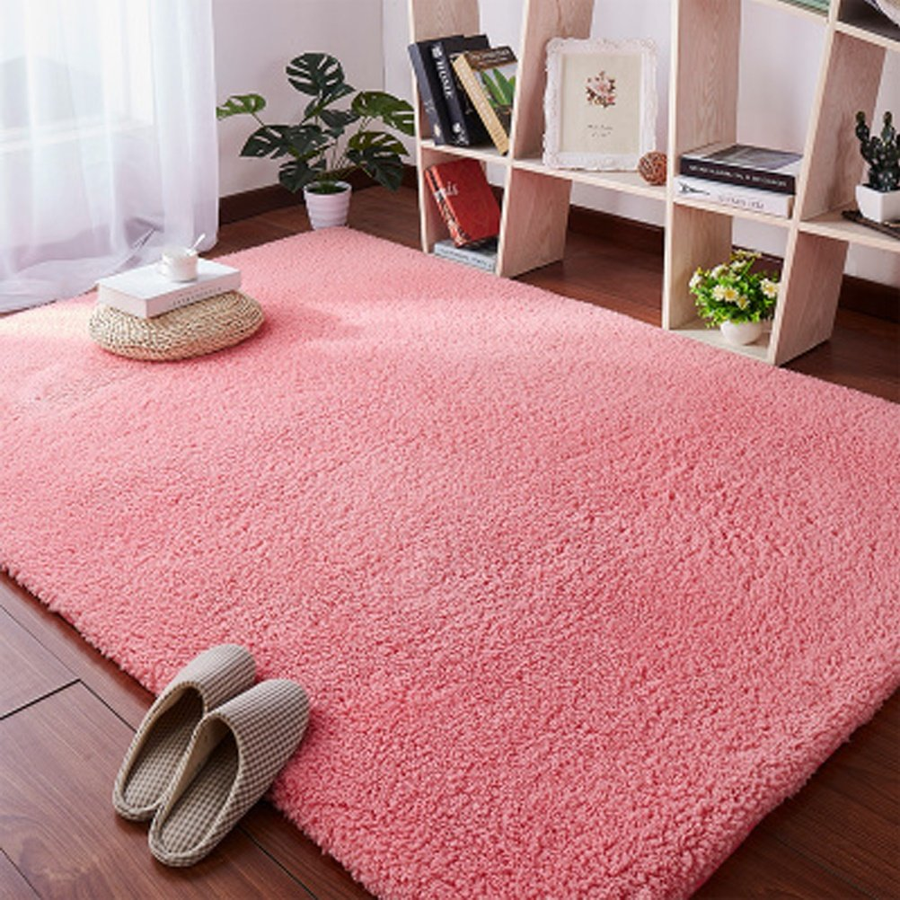 Shoe rack ZI LIN SHOP- Carpet Bedside Bed Mats Living Room Coffee Table Window Mat rug (Color : Pink, Size : 160X100m)