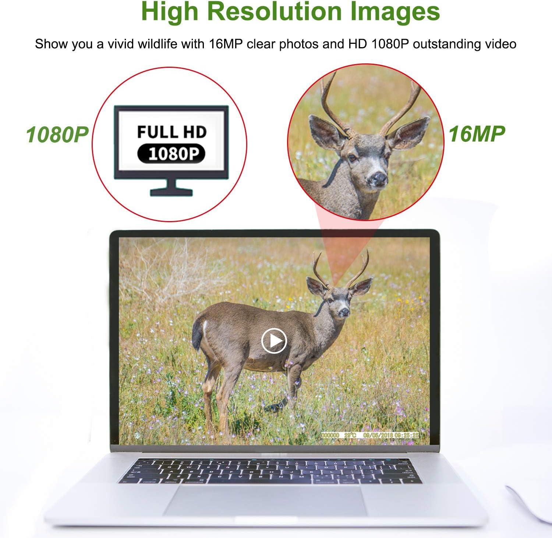 Apeman Wild C/ámara 20/MP 1080P 40/ledes IR Visi/ón Nocturna hasta 65/ft con IP66/Impermeable Vivienda para Caza de Animales dom/ésticos y Seguridad