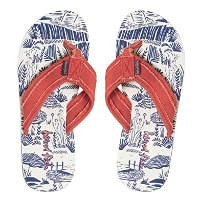 9833319c0f9626 Weird Fish Salcombe Women s Flip Flops  Amazon.co.uk  Shoes   Bags