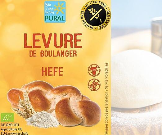 Levure De Boulanger Bio Sans Gluten Lot De 5 x 9g PURAL - Levure De Boulanger