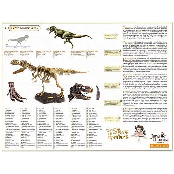 modello Vari Geoworld-Jurassic Hunters