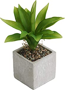 YOUPLUSUS Potted Artificial Agave Succulent Plants, Modern Indoor Greenery Home Decor Fake Plants in Pots for Home, Office - 10 Inch