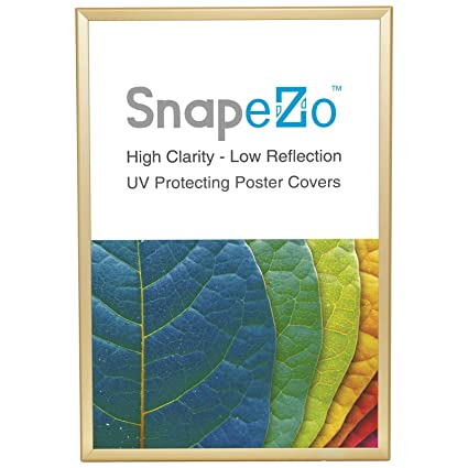 Amazon.com - SnapeZo Poster Frame 36x48 Inches, Gold 1.25\