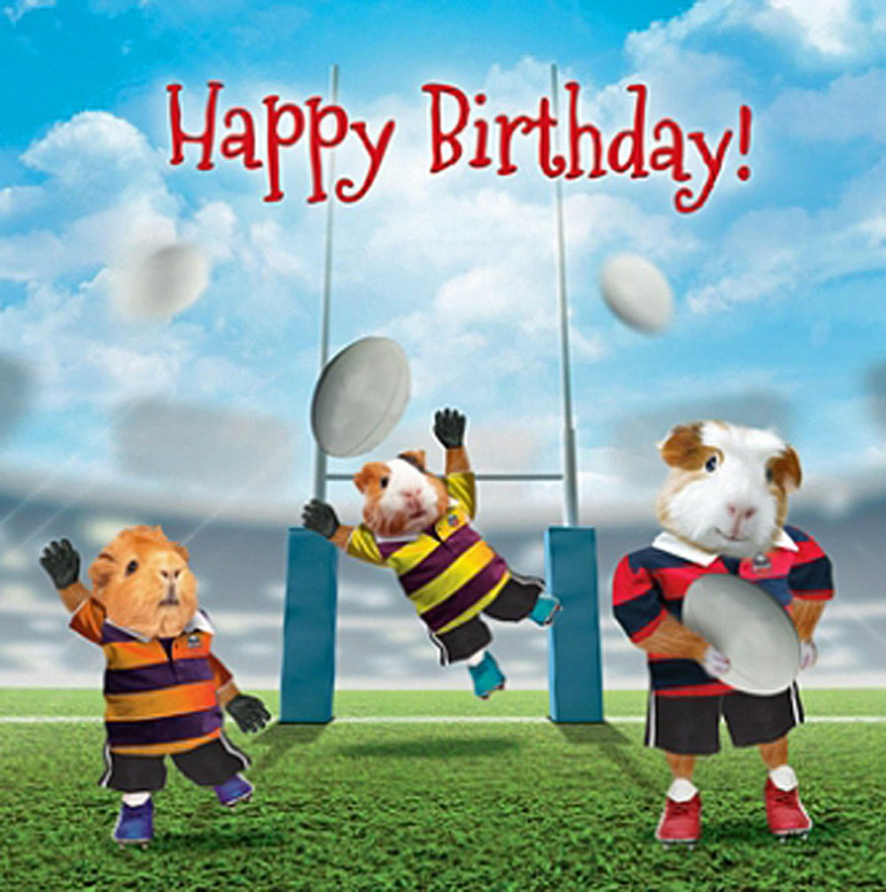 Guinea Pig Rugby Birthday Card Kick Through, Funny Guinea Pigs Greeting Card NEW 5060417189502 ...