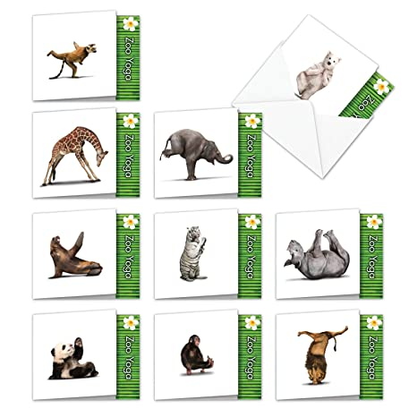 Assorted Boxed of 10 ZOO YOGA - Blank All Occasions Note Cards 4 x 5.12 inch w/Envelopes - Fun Zoo Animals Practicing Various Yoga Poses - Funny ...