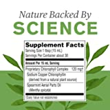 Nature's Sunshine Chlorophyll Liquid ES