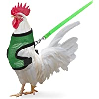 3.9FT Chicken Harness with Leash, CoiTek Adjustable Chicken Leash for Hens, Duck, Puppy, Breathable Comfortable Pet…