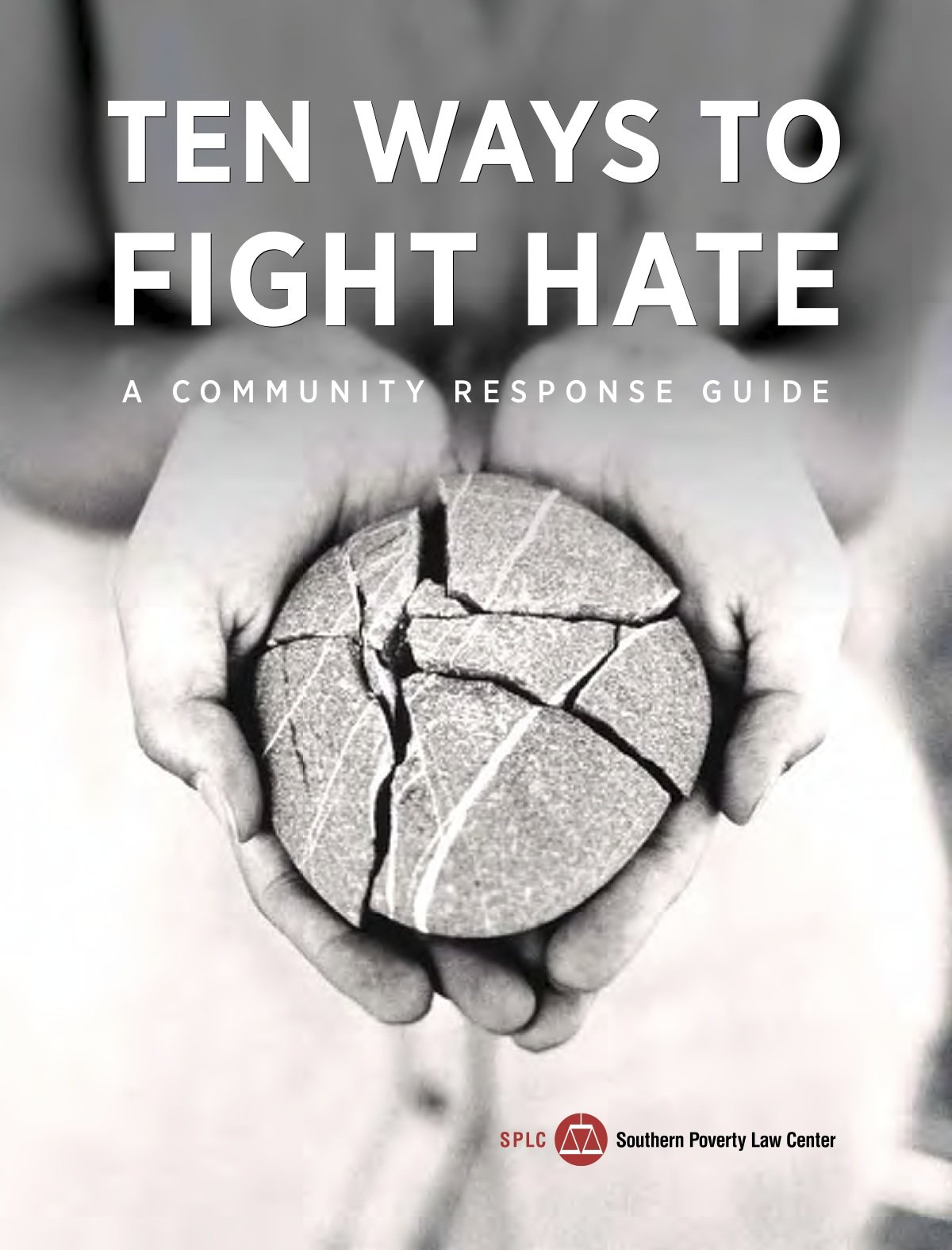 Read Online Ten ways to fight hate: A community response guide pdf epub