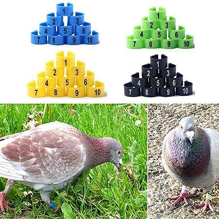 nbvmngjhjlkjlUK 100 Pezzi piccioni Anelli 8 mm Anello di identificazione a baionetta Apertura Anello Piccione Colore Anello Piede Piede Piccione Forniture Colore Casuale
