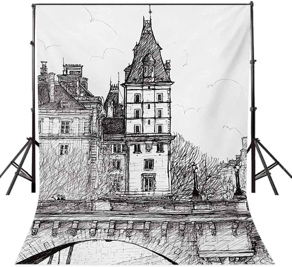 View from The Pont Neuf Historical French Landmark Urban Architecture Drawing Background for Photography Kids Adult Photo Booth Video Shoot Vinyl Studio Props Paris 10x12 FT Photography Backdrop