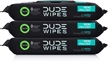 Dude Wipes Flushable Wet Wipes Dispenser, Mint Chill, 48 Count (Pack of 3) Scented Wet Wipes with Vitamin-E, Aloe,...